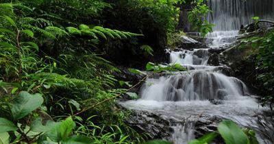 Chethalayam waterfalls