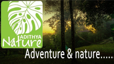 Adventure & Nature - Adithyanatureresort