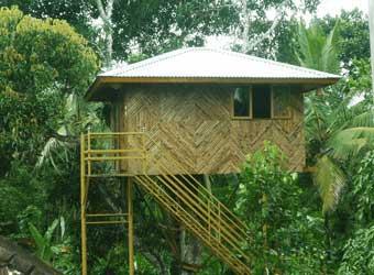 Hiliya Tree House Resort Sulthan Bathery Wayanad